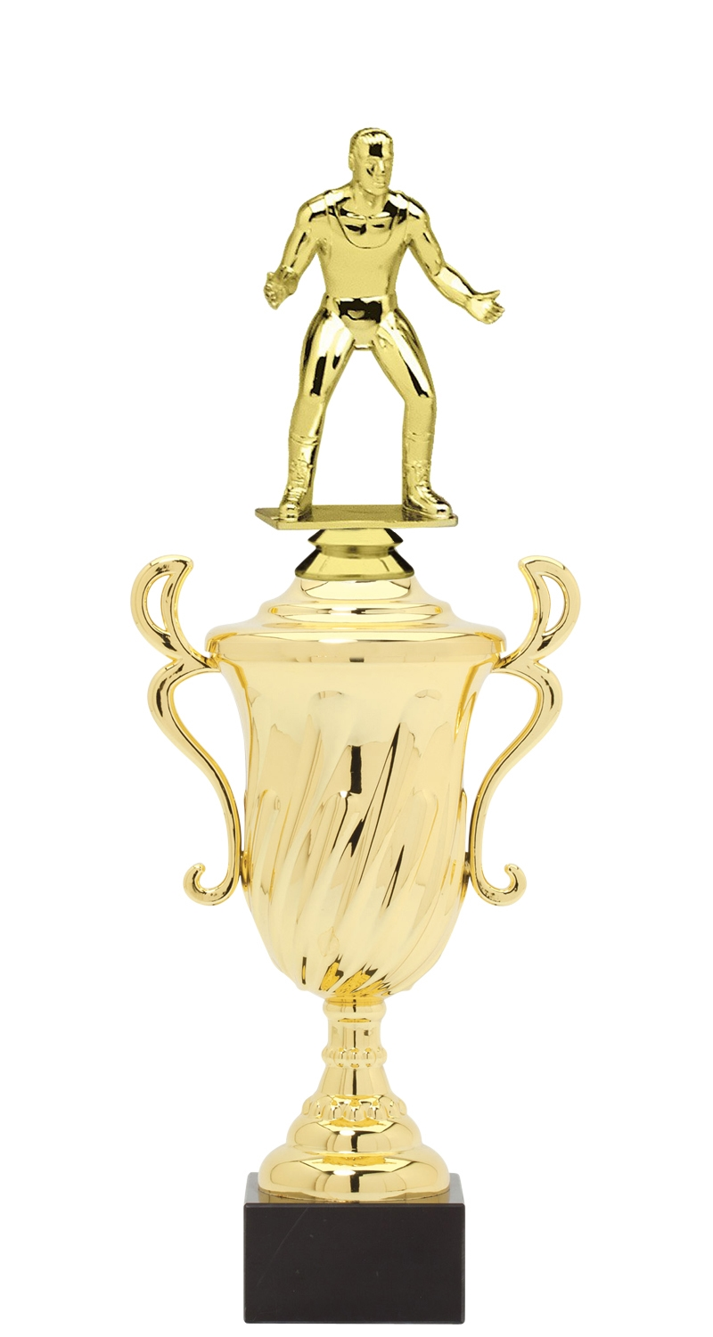 Wrestling Trophy Cup on synthetic base in (3 - Sizes)