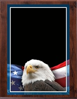 "8"" x 10"" Full Color Eagle Plaque VL810-MP306C"