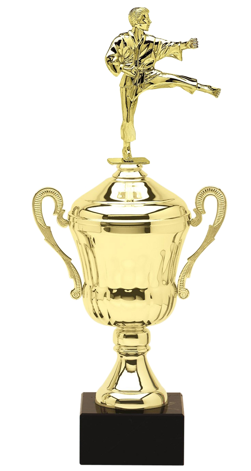 Metal Male Martial Arts Trophy Cup on Marble Base in (3 - Sizes)