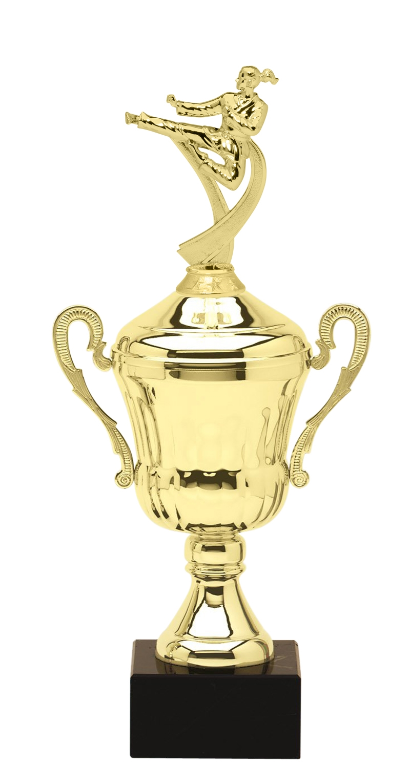 Metal Girls Martial Arts Trophy Cup on Marble Base in (3 - Sizes)