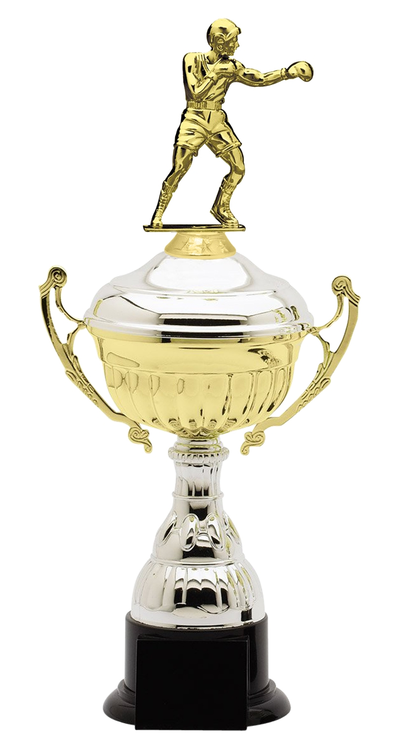 Metal Boxing Trophy Cup on Synthetic Base in (3 - Sizes)