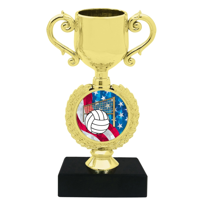 USA Volleyball Trophy Cup