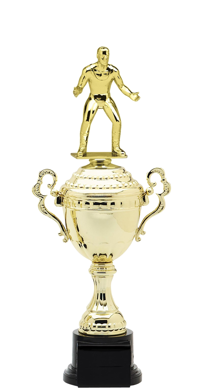 Wrestling Trophy Cup on synthetic base in (6 - Sizes)