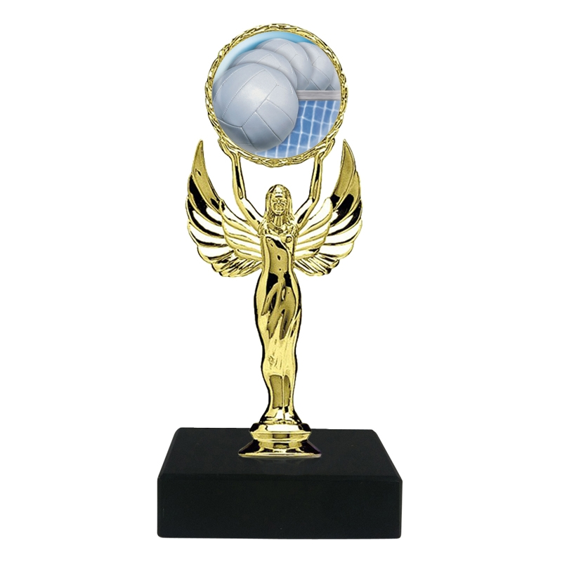 Volleyball Trophy