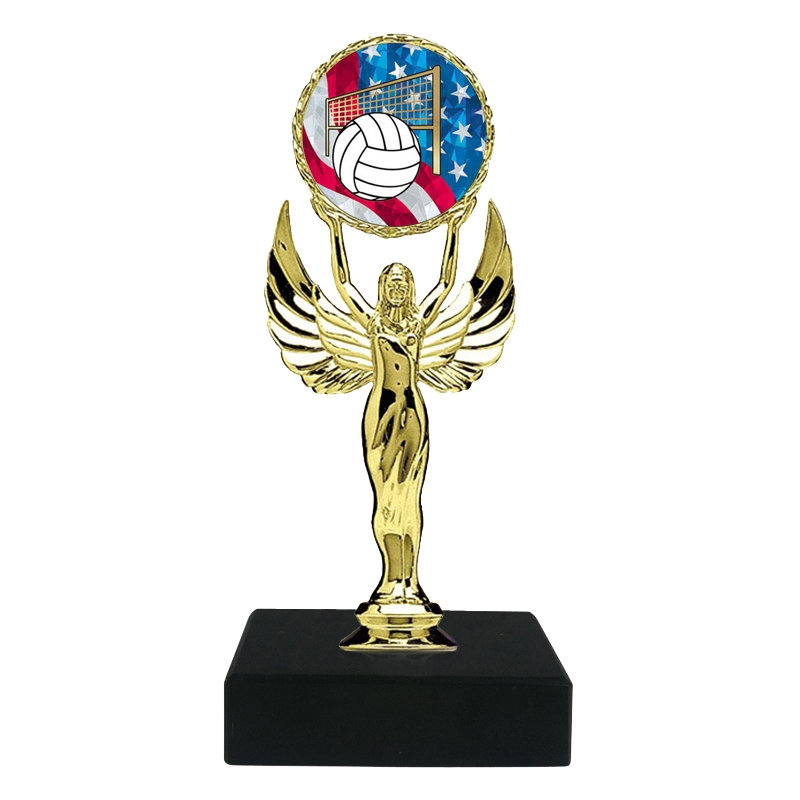 USA Volleyball Trophy