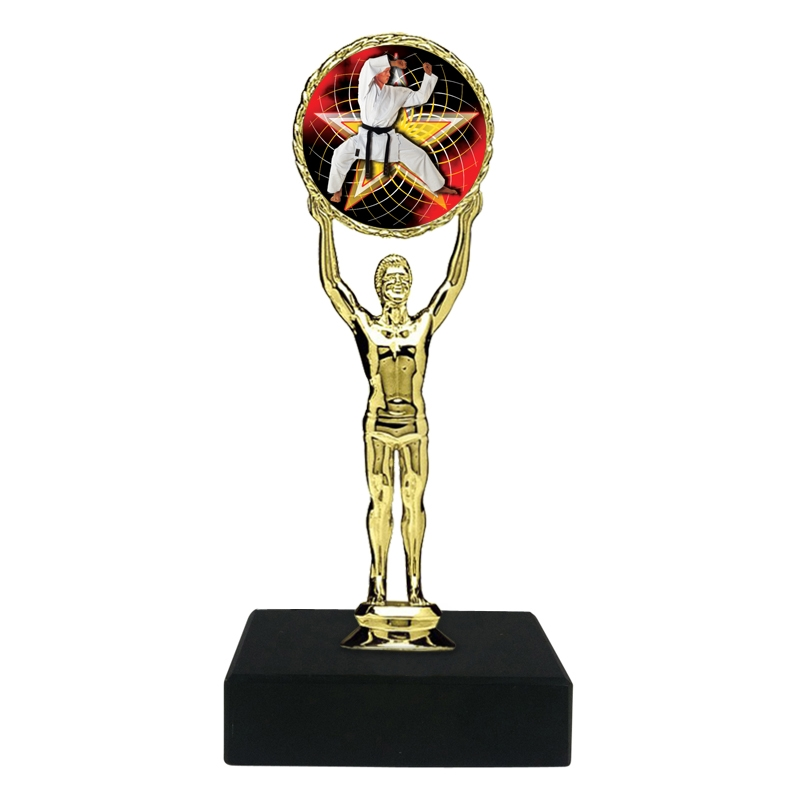 Martial Arts Karate Trophy