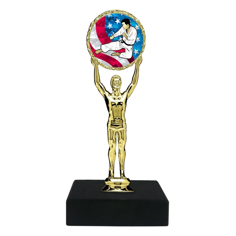 USA Karate Trophy