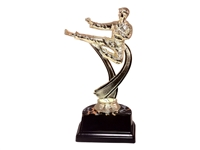 "6"" Male Karate Figure on Base Trophy MF4543-ASB335"