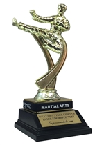 Male Martial Arts Trophy with Wrist Band
