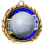 "2-1/2"" Wreath Color Insert Volleyball Medal O32A-FCL-572"