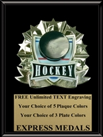 All-Star Hockey Plaque (4 Sizes) (PM1270)