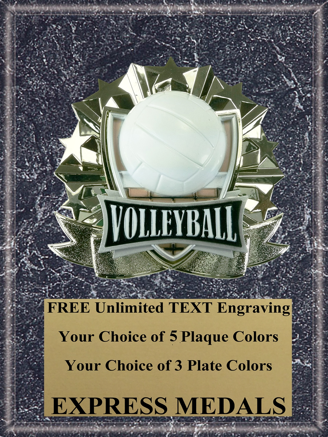 All-Star Volleyball Plaque (4 Sizes) (PM1277)