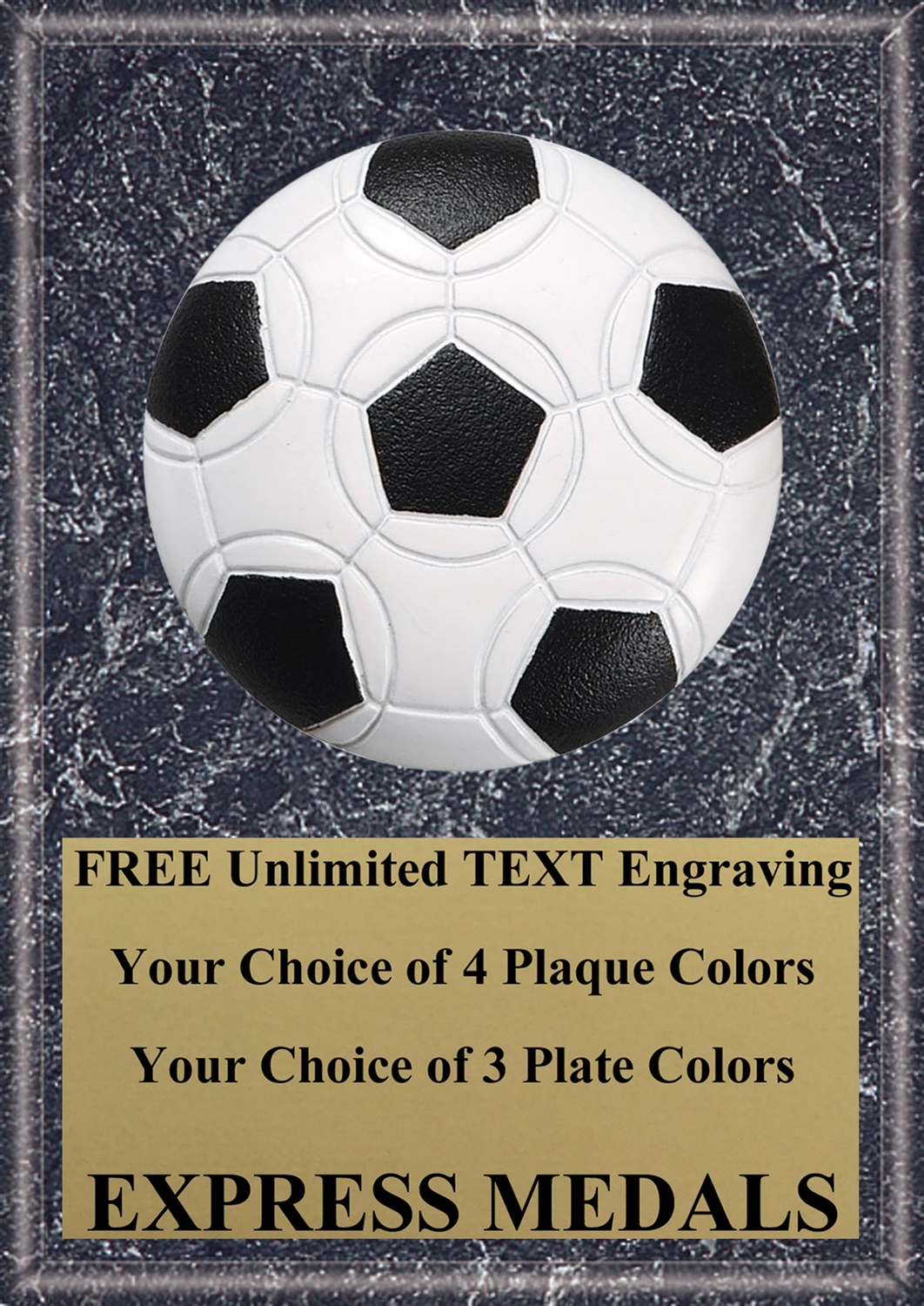Soccer Ball Plaque 4x6 & 5x7 PM3113-VL