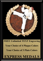 Full Color Martial Arts Karate Plaque 4x6 & 5x7 PM672-VL