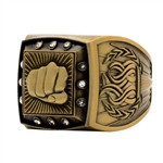 Martial Arts Ring