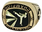 Champion Martial Arts Ring
