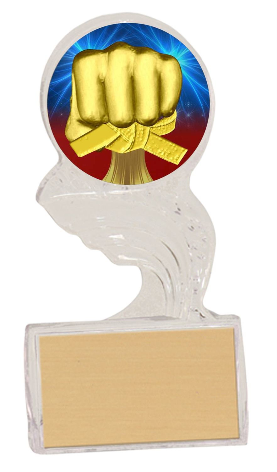 Small Martial Arts Trophy Cup