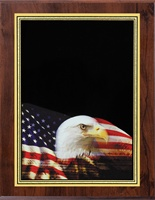 "5"" x 7"" Hi-Def Eagle Plaque VL57-ZA46EAGLE"