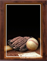 "6"" x 8"" Full Color Baseball Plaque VL68-MP301B"
